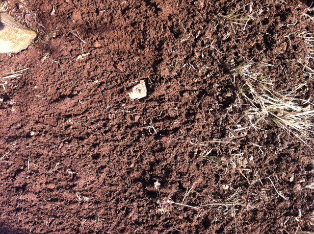 Volcanic soil in Piedmonte