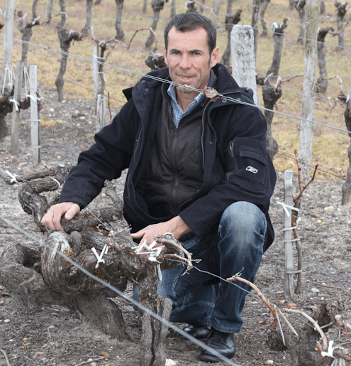 Stéphane Dief of Clos Manou with one of his 1850s vines
