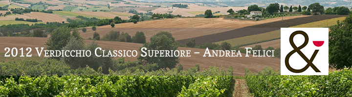 Andrea-Felici-Azienda-Agricola-Biologica-Lea-and-Sandeman-Wine-Merchants-Vineyards-Banner-La-Marche-Italy