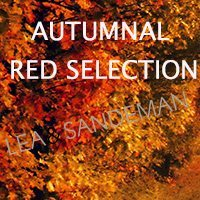 Autumn-Reds-Offer---Lea-&-Sandeman-Independent-Wine-Merchants-Feature