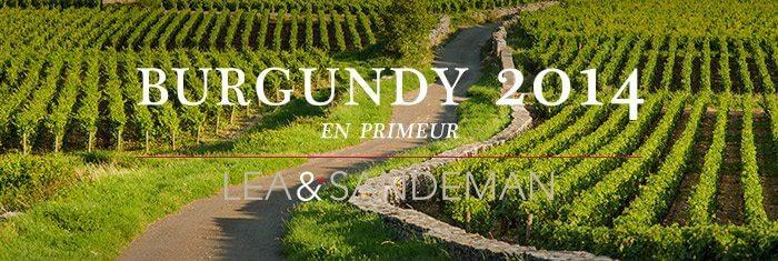 2015-Burgundy-En-Primeur
