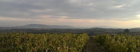 View from the hills of Maremma to the Sea