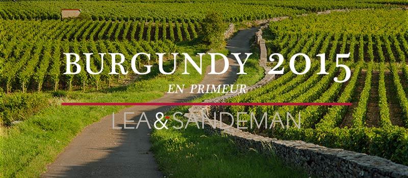 2015-Burgundy-Banner-Blog-800