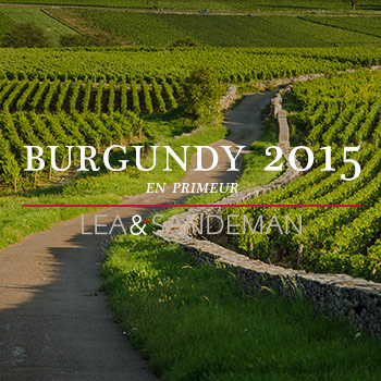 2015-Burgundy-Banner-Blog-Feature