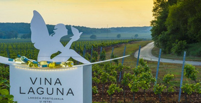 vina-laguna-featured-image