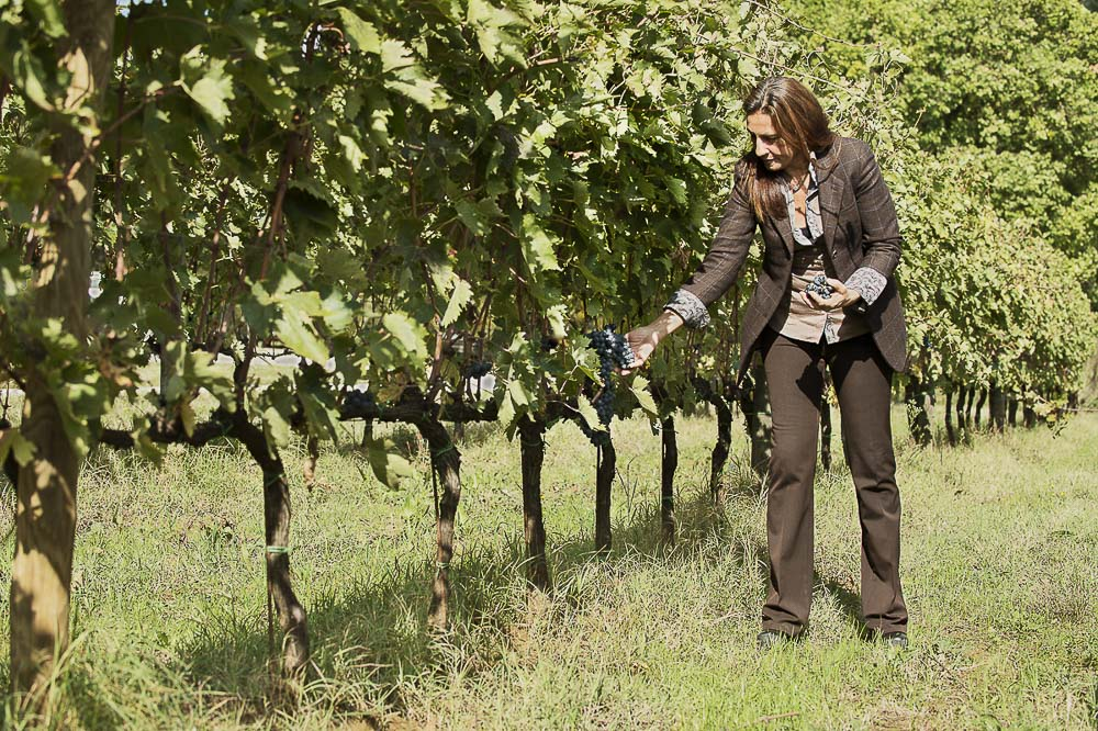 Caterina Dei working amongst her Montepulciano Vines in the vineyards of Cantine Dei
