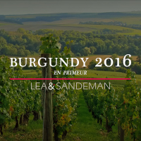 2016-Burgundy-En-Primeur-Money-Week