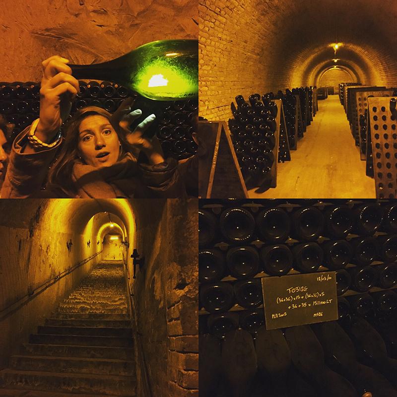Cellar Tour