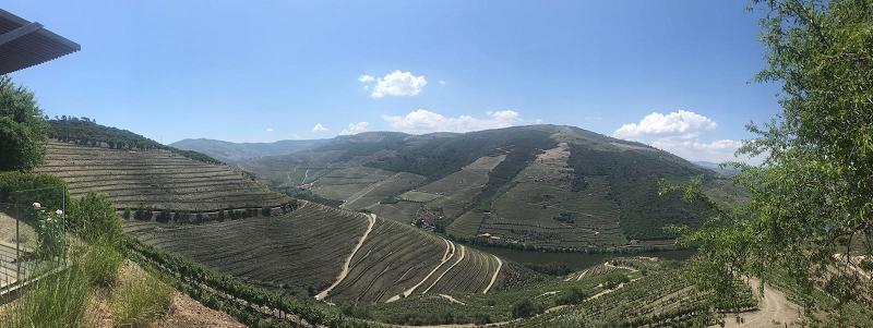 Quinta da Romaneira Panorama