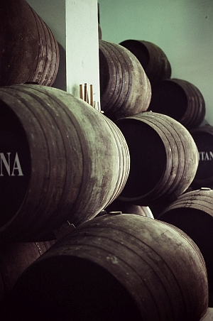Barrels at Hidalgo