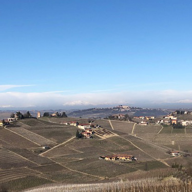 Barbaresco from Sottimano