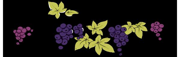 vine leaves border