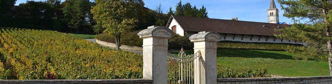 6b645559104083 Domaine Paul et Marie Jacqueson  Burgundy, France
