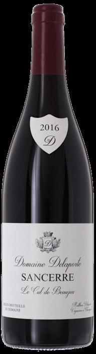 2016 SANCERRE Cul de Beaujeu Rouge Chavignol Domaine Vincent Delaporte, Lea & Sandeman