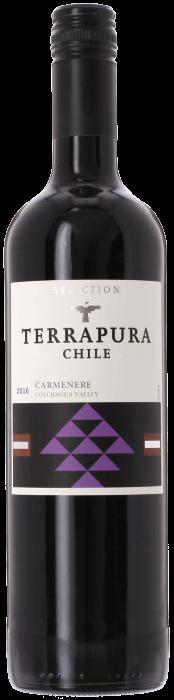 2016 TERRAPURA Carmenère Viña Terrapura, Lea & Sandeman