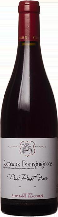 2017 CÔTEAUX BOURGUIGNONS Pur Pinot Noir Domaine Stéphane Magnien, Lea & Sandeman